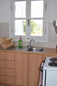 A kitchen or kitchenette at Anastasios Olive Garden Apartments