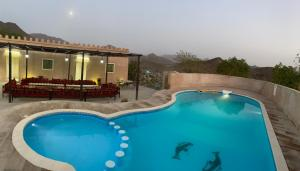 A view of the pool at Alshahad Farm or nearby