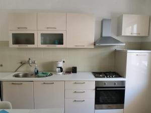 Kuchyňa alebo kuchynka v ubytovaní Novalja center 4 bedroom & jacuzzi house