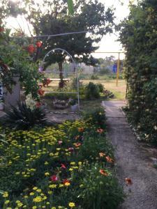A garden outside Guest House Elena