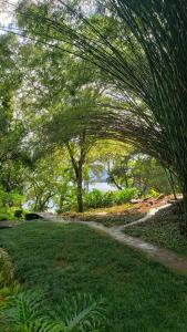 A garden outside O Sitio - Ilha Grande