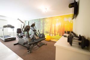 Het fitnesscentrum en/of fitnessfaciliteiten van The Andros Boutique Hotel