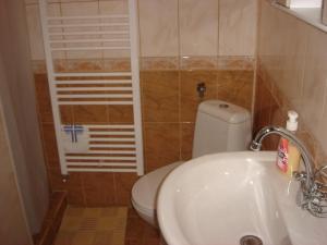 A bathroom at Guest House PETROVA
