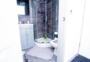 A bathroom at Cosy Executive City Apartment