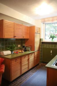 A kitchen or kitchenette at Apartment Centrum im Grünen