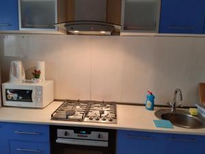 Кухня или мини-кухня в Апартаменты на Ленина