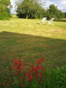 A garden outside Haute Perche