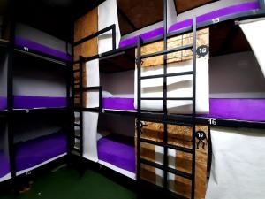 A bunk bed or bunk beds in a room at Hostel la Antigua Capsula