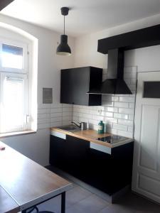 A kitchen or kitchenette at MIESZKANIE Poznanska 31