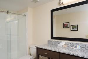 A bathroom at Comfort Suites Maingate East