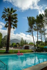 The swimming pool at or near Finca Soñada - Nudist Resort
