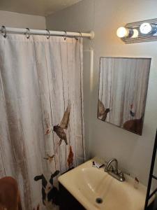 A bathroom at Brad's Desert Inn