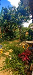 A garden outside Chalezinho Morito