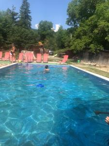 The swimming pool at or near Hovanka