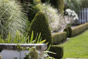 A garden outside Villa Clarisse