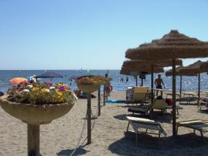 A beach at or near the resort village