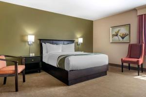 A bed or beds in a room at Quality Inn & Suites Amsterdam Quispamsis