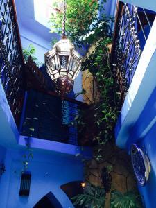 Majoituspaikan Hotel Molino Garden uima-allas tai lähistöllä sijaitseva uima-allas