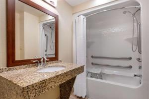 A bathroom at Comfort Suites Near Universal Orlando Resort