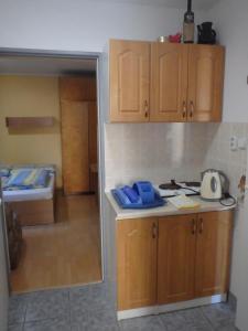 Kuchyň nebo kuchyňský kout v ubytování Privat Ján Vereš