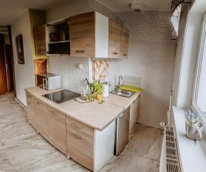 Kuchnia lub aneks kuchenny w obiekcie Apartament Gazdowski