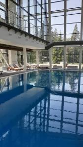 The swimming pool at or near Euphoria Club Hotel