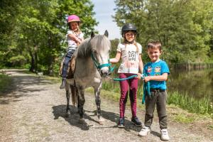 Horseback riding at the guesthouse or nearby
