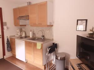 A kitchen or kitchenette at Ser's appartement met alle voorzieningen in Maastricht