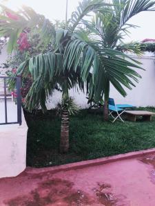 A garden outside Villa Saint-Sulpice Apt avec piscine