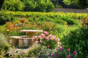 A garden outside O'Vineyards B&B Carcassonne