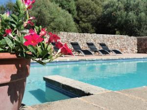 The swimming pool at or near Cucurutxa