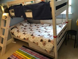 A bunk bed or bunk beds in a room at Wellness Haven Micro Pop-up Hostel Catford