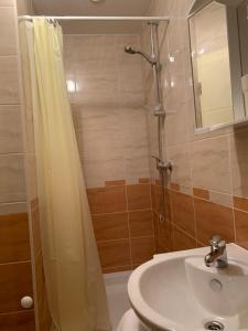 A bathroom at Vinarija Zlatar