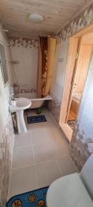 Ванная комната в Гостевой дом Ёлочка