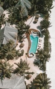 A view of the pool at Zanziblue or nearby