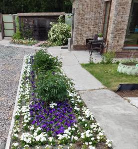 A garden outside guest house Elizaveta