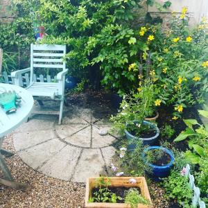 A garden outside Courtyard Garden Flat
