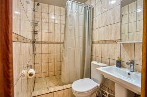 A bathroom at Hotel Ladomir in Fili