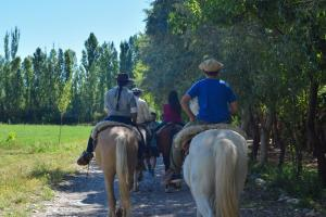 Horseback riding at the hostel or nearby