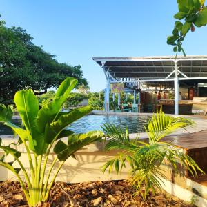 The swimming pool at or near Convento Arcádia