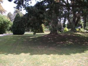 A garden outside Fieldways