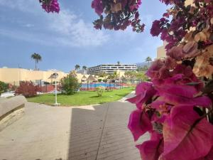 The swimming pool at or near El Cortijo Luxury