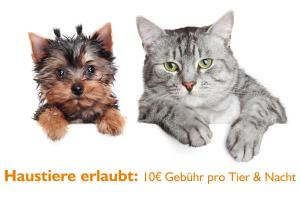 Pet or pets staying with guests at Gasthaus Zum Schwan