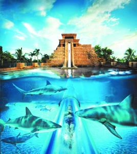 The swimming pool at or near Comfort Suites Paradise Island
