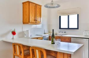 A kitchen or kitchenette at Tavros Hotel Apartments