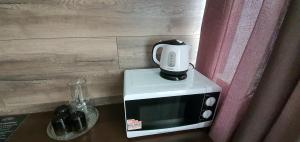 A kitchen or kitchenette at Centralnaya Hotel