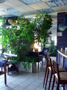 Restaurant ou autre lieu de restauration dans l'établissement Hôtel du Petit Matelot