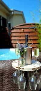 Bazen v nastanitvi oz. blizu nastanitve Apartment Guesthouse NOSTALGIA with jacuzzi, solar shower and BBQ