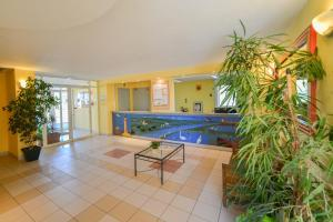 The swimming pool at or near Residence Residhotel Mayflower