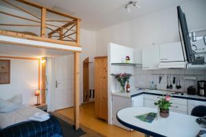 Küche/Küchenzeile in der Unterkunft Apartments am Schlosspark